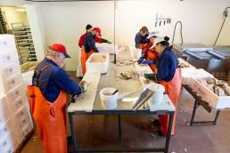 Ansatte på Grande Fiskerute arbeider med fisk